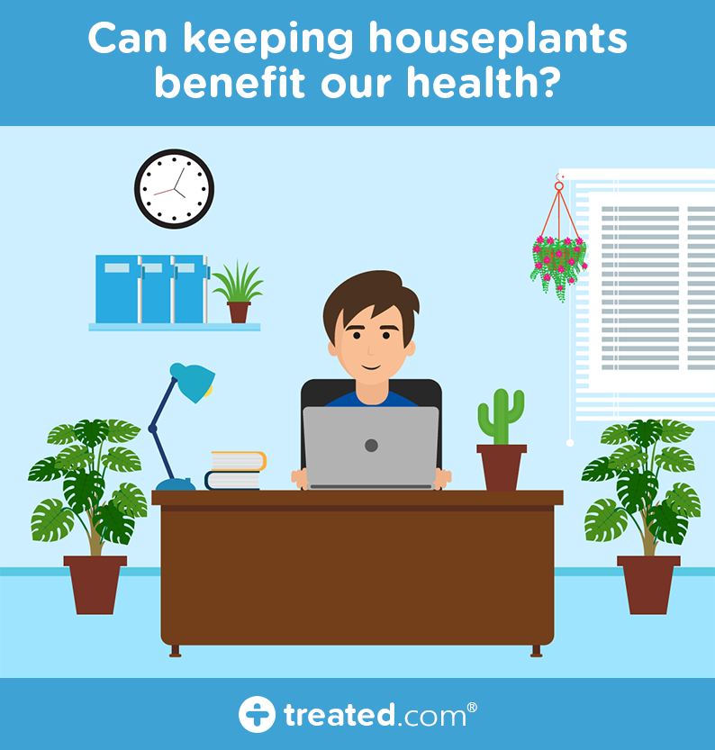 Are Houseplants Good For Our Mental Health