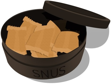 snus_blogg_preview_se